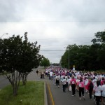 Race for the Cure 2008 - Many, many participants!