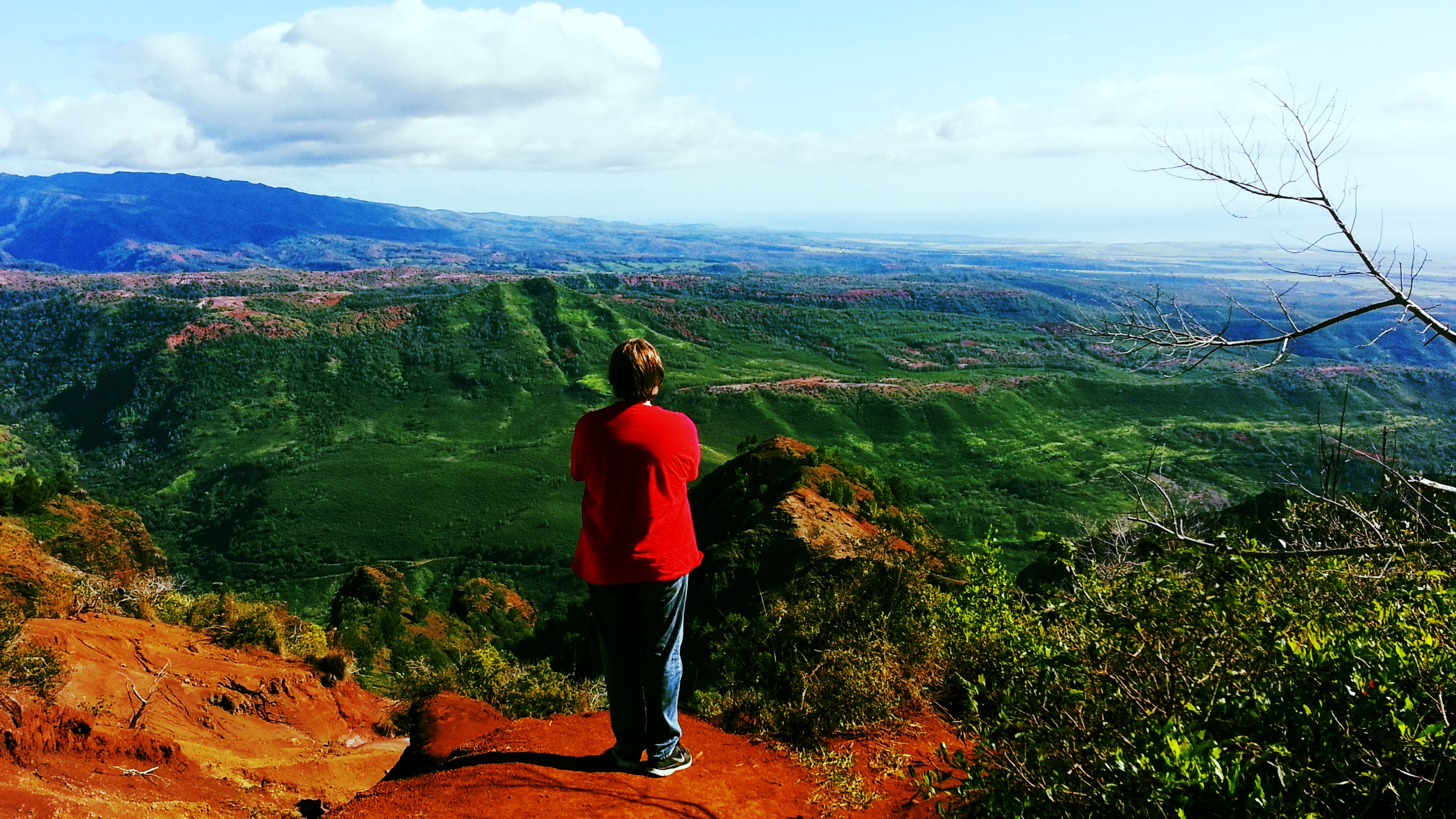 Our middle son T, now 17 years old, looking out over the beauty of Hawai'i as we drove through Waimea Canyon.